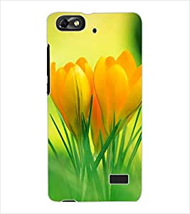ColourCraft Lovely Flowers Design Back Case Cover for HUAWEI G PLAY MINI
