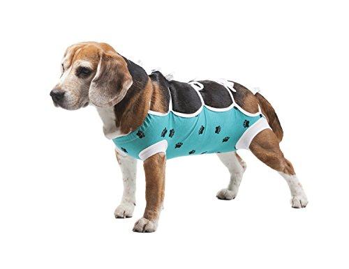 E-Collar Alternative: After Surgery Wear (Small) (Dog E Collar Alternative compare prices)