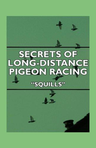 Secrets Of Long-Distance Pigeon Racing