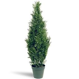 National Tree Arborvitae Tree with Dark Green Round Plastic Pot, 36-Inch