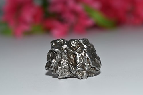 Campo Del Cielo Meteorite 30.3g- 3rd Eye, Crown Activation, Ascension, Spiritual Awakening, High Vibration, Crystal Healing, Wicca, Pagan (High Vibration Crystals compare prices)