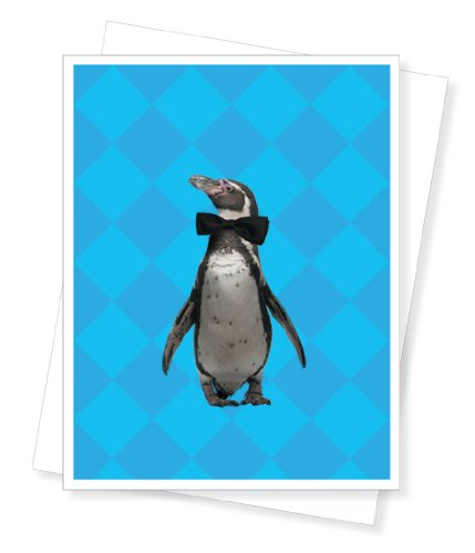 Popular birthday wishes cards for party penguin birthday for Penguin christmas cards homemade