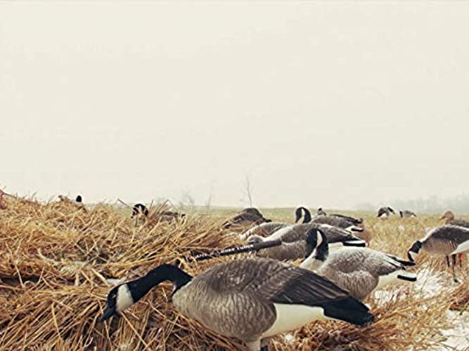 Heartland Waterfowl Season 4 Episode 3