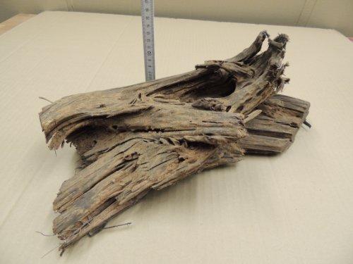 Mangrovenholz-Mangrove-Dekoholz-fr-Aquarium-und-Terrarium