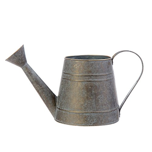 Small Silver Galvanized Iron Watering Can For Plants 4 5 X 5 5 Inches Home Garden Lawn Garden