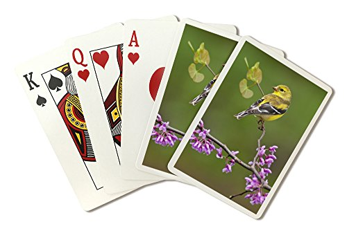 American Goldfinch (Playing Card Deck - 52 Card Poker Size with Jokers)