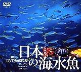 日本の海水魚 DVD映像図鑑