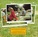 Fairport Convention What We Did On Our Holidays: An Introduction To Fairport Convention