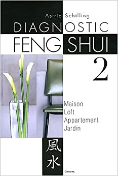 diagnostic feng shui 2 maison loft appartement jardin astrid schilling. Black Bedroom Furniture Sets. Home Design Ideas