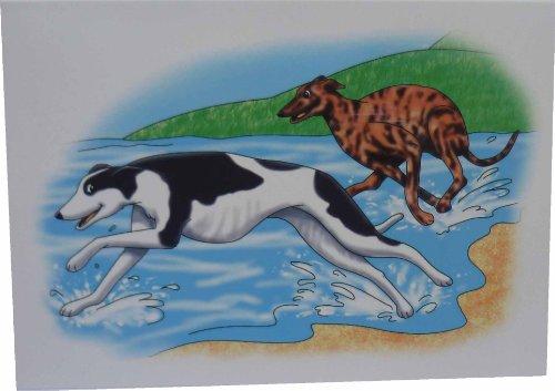 greyhounds-di-mare-pezzato-e-biglietti-colore-nero-confezione-da-10