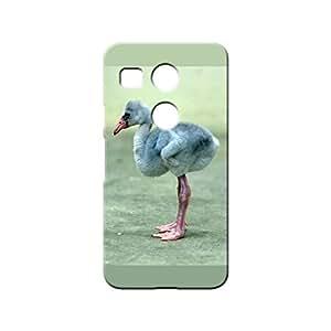G-STAR Designer 3D Printed Back case cover for LG Nexus 5X - G1395