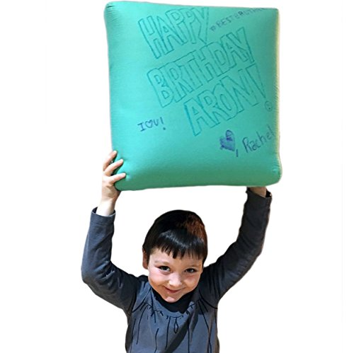 FOMI LARGE Memory Foam Kids Decorative Pillow, Aqua, Rewritable, Cozy, Write and Wash Off Messages (17 X 17 X 6) (Means Any Skin Type Will compare prices)