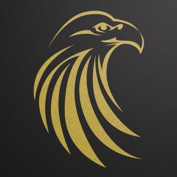 Eagle... Gold-Matte (18 X 12.7 inch) W9W83