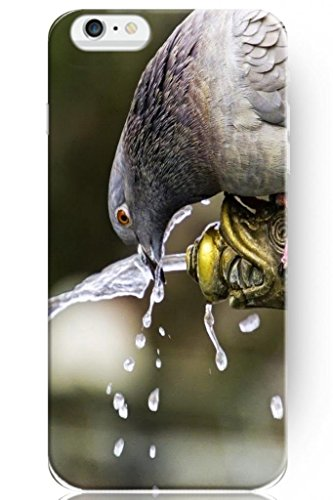 Sprawl Wild Animal Style Hard Skin Cover Shell For Mobile Phone Apple Iphone 6 Plus 5.5 Case -- Pigeon Drink Water