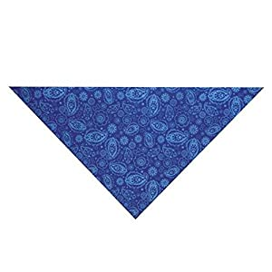 Guardian Gear Insect Shield Paisley Bandana for Dogs, Blue
