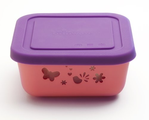 Brinware / Garden Party Tempered Glass Food Storage Container with Removable Silicone Sleeve