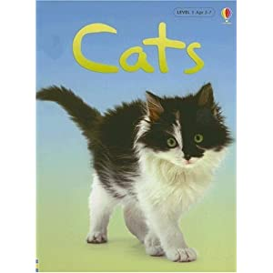 Cats (Usborne Beginners, Level 1)