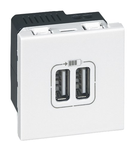 legrand-leg99604-socket-with-2-usb-ports-with-trim-and-casing-white