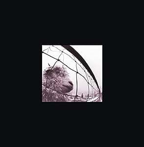 Vs. & Vitalogy (Coffret 3 CD)