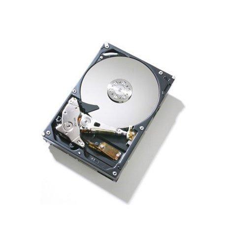 Hitachi Deskstar HDS721010KLA330 1TB 8,9 cm (3,5 Zoll) Festplatte intern SATA II 300 MB/s 7200RPM 32MB Cache