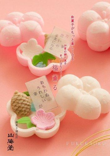 和菓子職人の旬ギフト  福薫る 10個入り包装