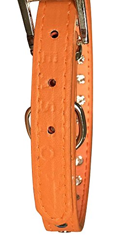 Pets-House-Dog-Collars-for-Small-Dogs-Prime-XS-Orange