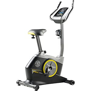 Gold's Gym Cycle Trainer 290 C Upright Exercise Bike