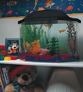 Aquarius aq15002 semi hexagon 5 gallon for 10 gallon hexagon fish tank