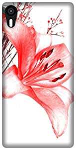 The Racoon Grip flower sketches hard plastic printed back case / cover for Lenovo Vibe Shot