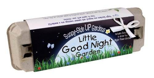 Little Good Night Egg Carton Garden