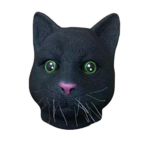 Hallo (Cat Doesnt Like Halloween Costume)