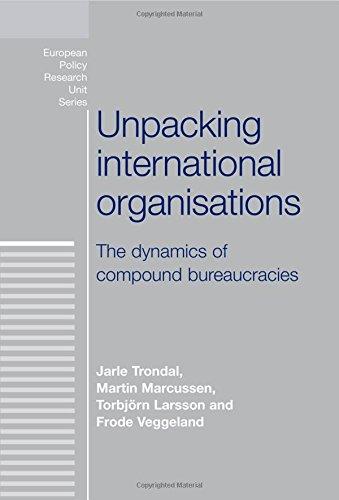 unpacking-international-organisations-the-dynamics-of-compound-bureaucracies