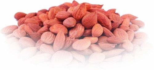 Wild Organic Apricot Kernels