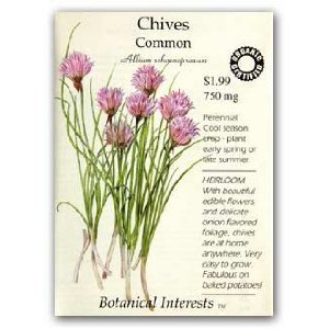 Common Chives Seeds - 750 mg - Certified OrganicB0006BHJ1G : image