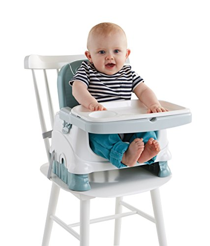Fisher-Price Healthy Care Deluxe Booster Seat (Travel Booster Seat With Tray compare prices)