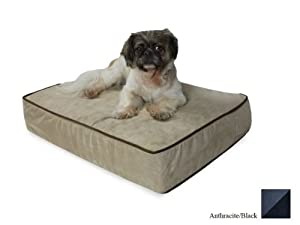 Snoozer Outlast Dog Bed Sleep System 3-Inch Thick, X-Large, Anthracite/Black
