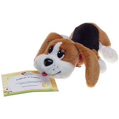 Amazon.com: Pound Puppies Beagle Pick Me Up