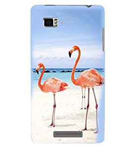 Printvisa Premium Back Cover Pair Of Flamingos In Love Design For Lenovo Vibe Z K910