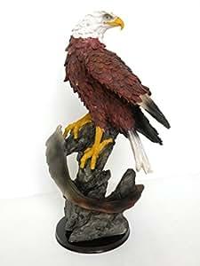 "Amazon.com: ""Eagle iRoot""TM Creative King of the Skies ..."