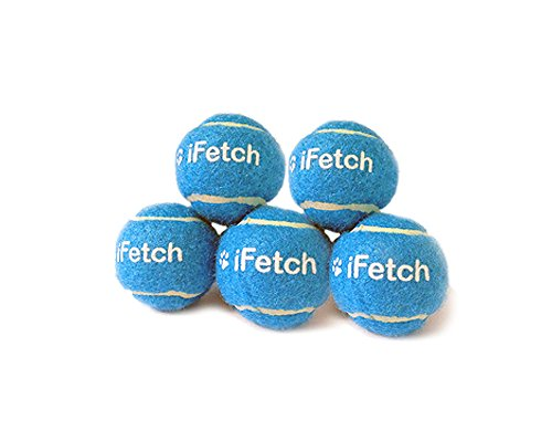 Small iFetch Mini Tennis Balls (Mini Tennis Balls compare prices)