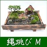 盆栽・盆景 縄跳び(M)