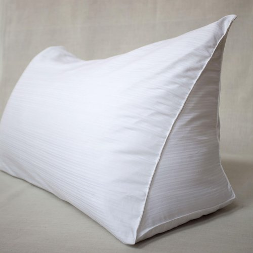 Reading Wedge Pillow Cover