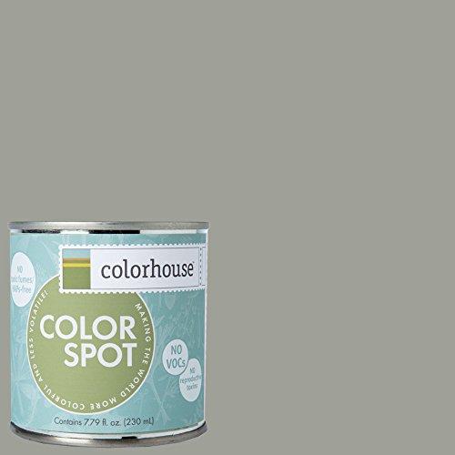 inspired-eggshell-interior-colorspot-paint-sample-metal-04-8-oz