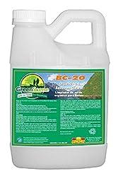 Green Scene Restroom Cleaner 1 Gallon 4 Per Case BC20G1381004