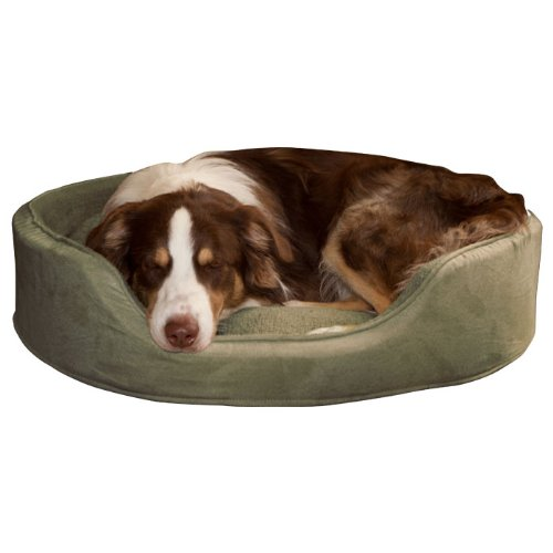 Compare Prices Paw Cuddle Round Suede Terry Pet Bed Forest Medium Piapiirainenwan