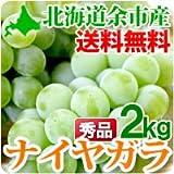 北海道美食生活 ナイヤガラ 北海道余市産ぶどう秀品L?2Lサイズ2kg