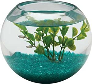 how to clean a round fish tank