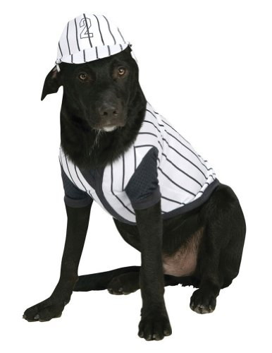 Cat & Dog Costume Baseball Player Large