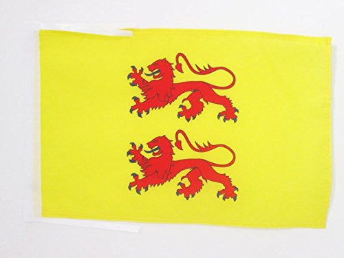 bandiera-contea-di-bigorre-45x30cm-bandierina-conti-di-bigorre-30-x-45-cm-cordicelle-az-flag