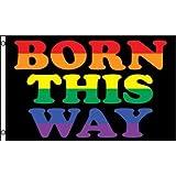 BORN THIS WAY FLAG, 3'x5' Rainbow Poster Banner, Gay Lesbian Transgender